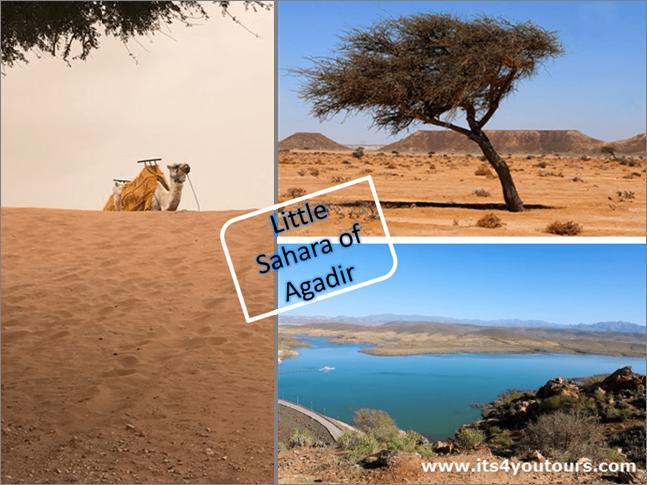 Small desert & Massa oasis by minibus