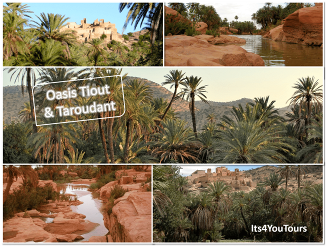 Excursion Tiout oasis & Taroudant