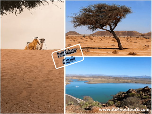 Excursion Agadir d�sert et dunes