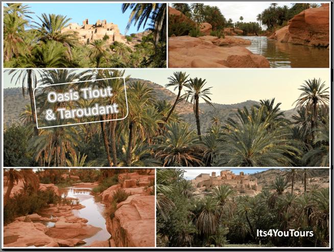 Visiter Oasis Tiout & Taroudant