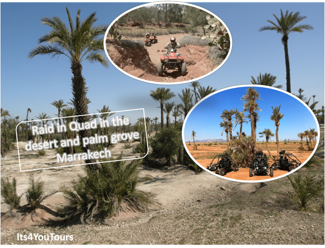 Quand and Buggy Ride in Desert and Palm Groves Marrakech