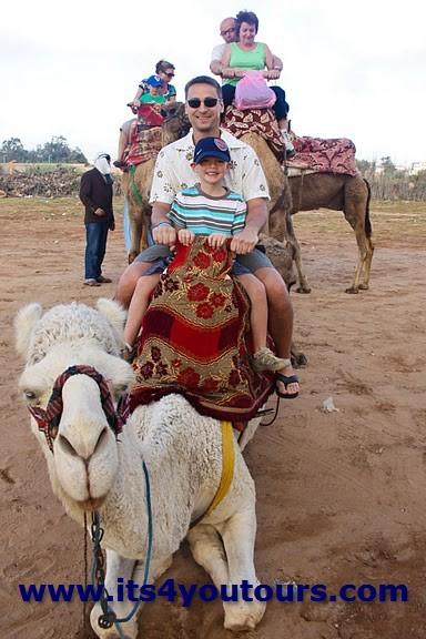 Balade Dromadaire ou Balade à Cheval a Agadir